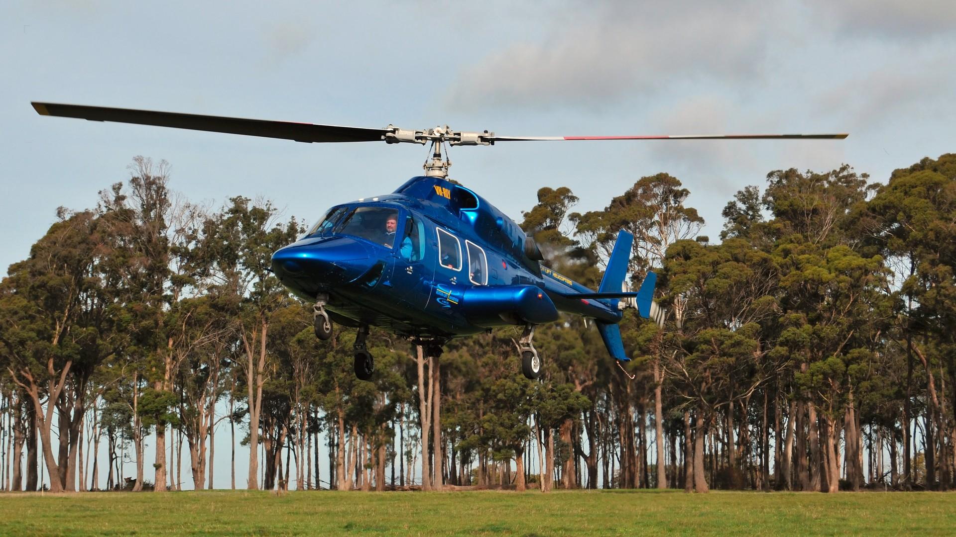 2 x Bell 222